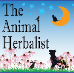 The Animal Herbalist